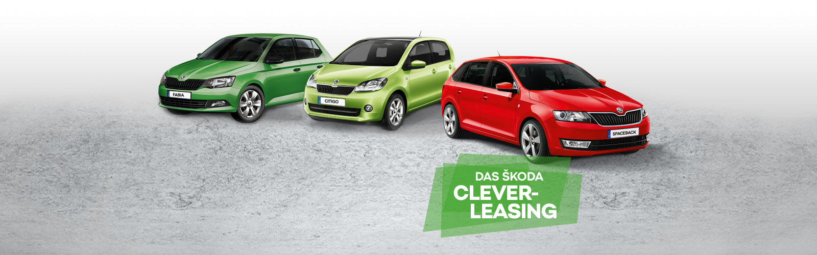 cleverleasing Skodamueller Background